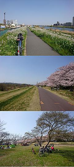 180401cycling.jpg